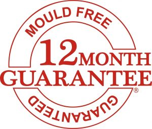 12 Month Guarantee Vector